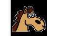 Horse Colour